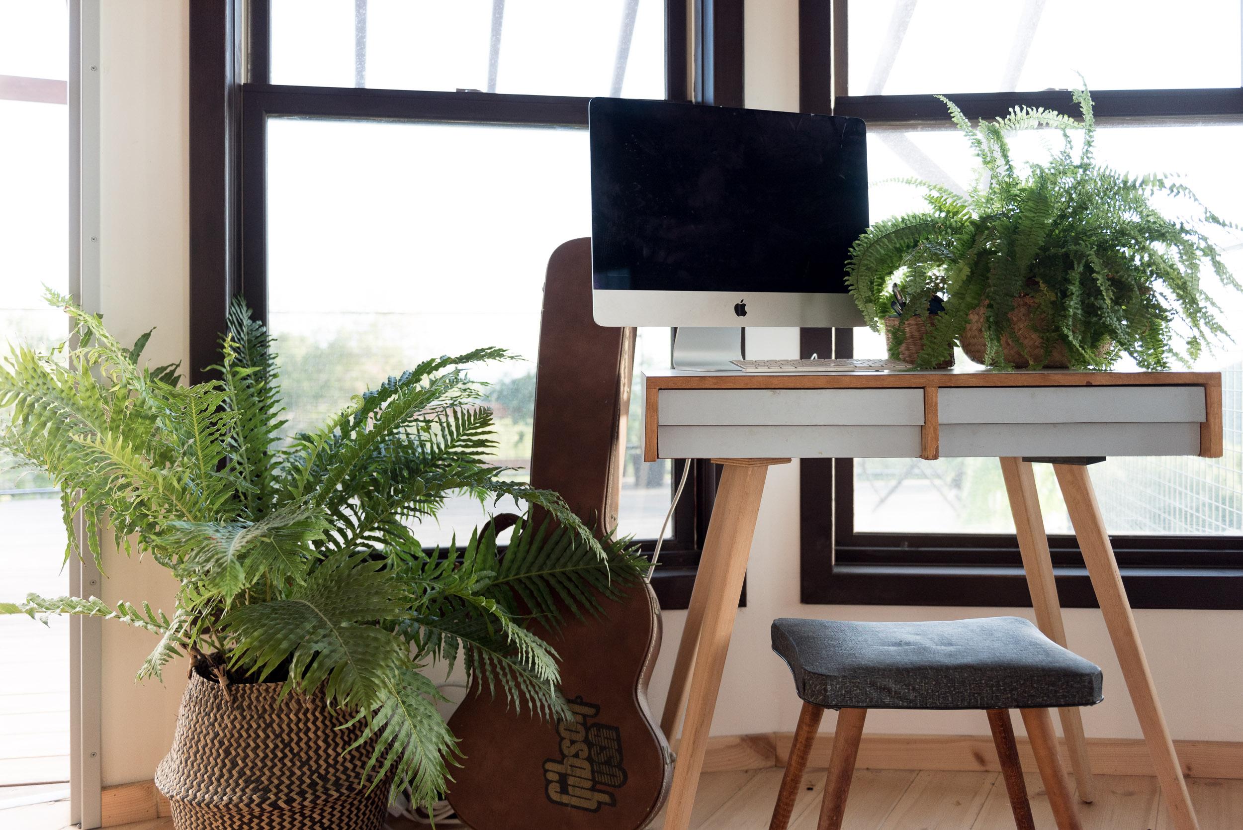פינת מחשב, בית מונגולי